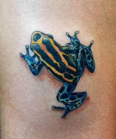 rana frog tattoo tatuaje colores new school ivan de castres